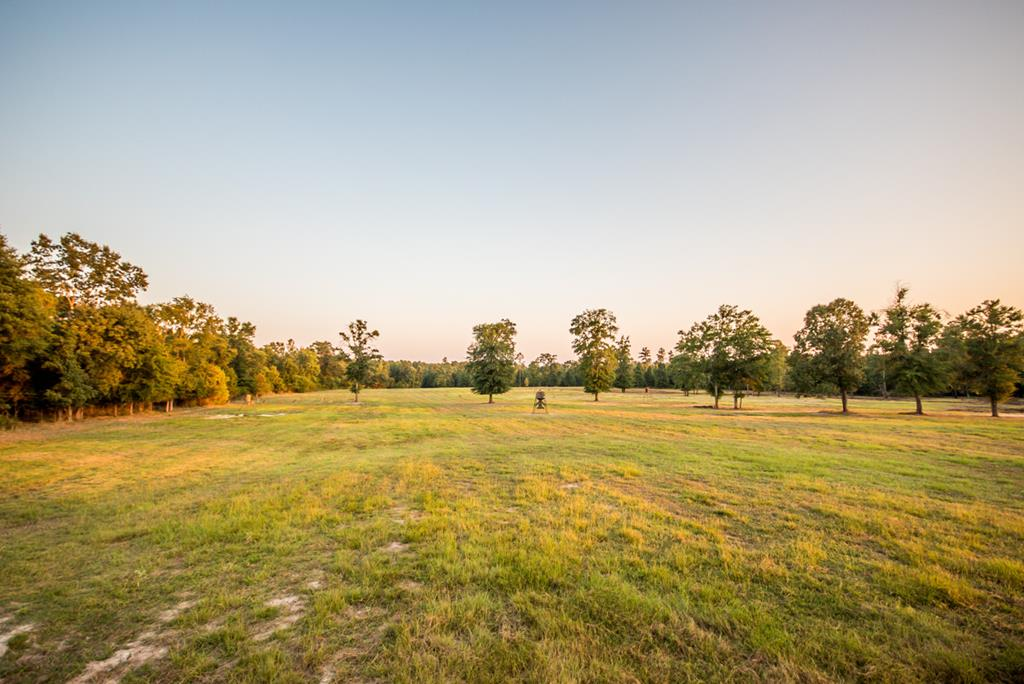 cleared pasture land and wooded areas